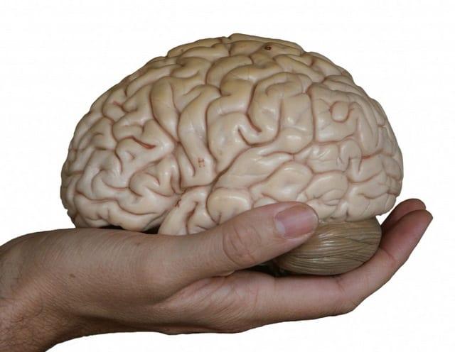La revolución de la terapia cognitiva