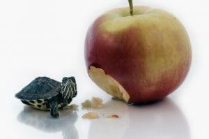 comer manazana
