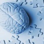 El mapa del cerebro humano