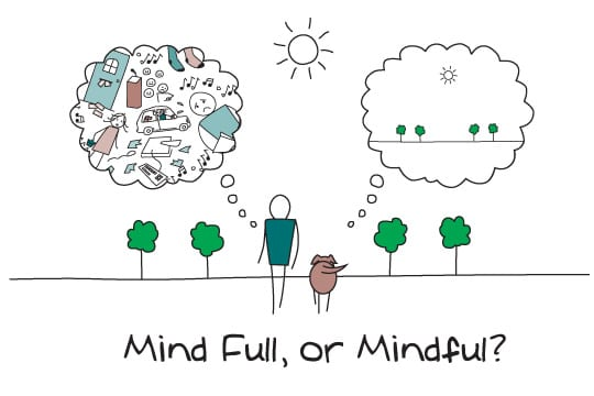 10 cosas que quizás no sepas sobre el Mindfulness