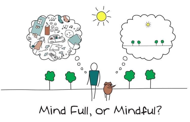 5 consejos para integrar el Mindfulness en tu día a día