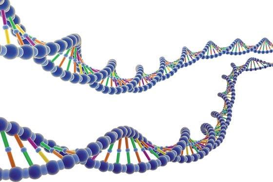 ¿Es la vida del color del gen con que se mira?