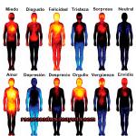 emociones positivas y negativas