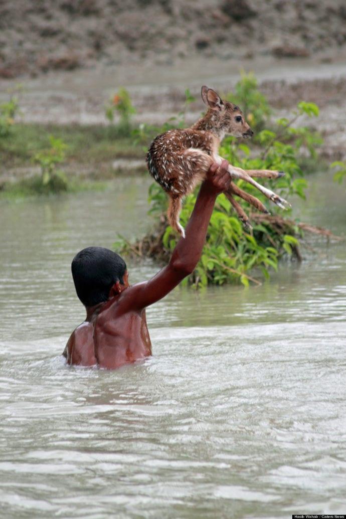 Metiendose en el rio