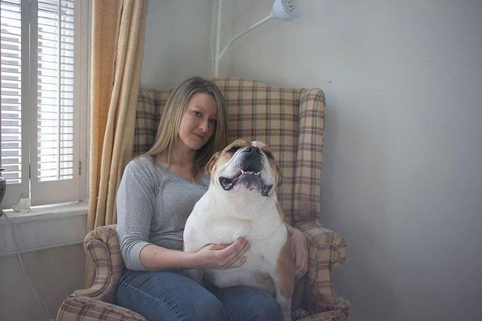 perro adoptado