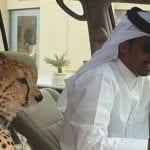 El vergonzoso Ministerio de la Felicidad de los Emiratos Árabes Unidos