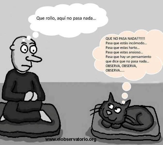 mindfulness-humor