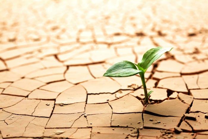 Cómo desarrollar la persistencia según Napoleón Hill