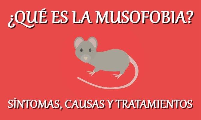 Musofobia o fobia a las ratas — Qué es, causas, síntomas y tratamiento