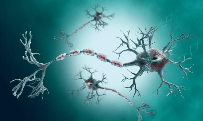 Síndrome de Guillain Barré — Causas, síntomas, diagnóstico y tratamiento