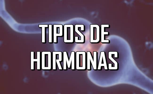 Tipos de hormonas — ¿Dónde se producen y para qué sirven?