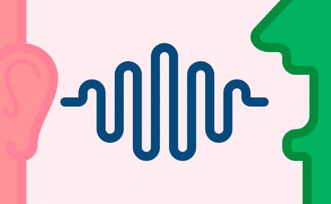 Circuito Del Habla : El circuito del habla y sus elementos