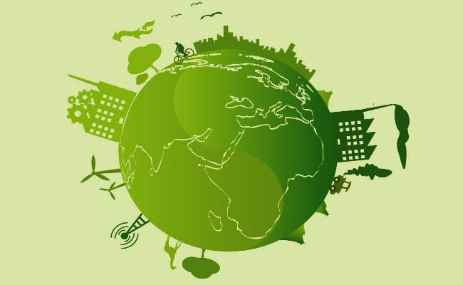 ¿Qué es el consumo sustentable?