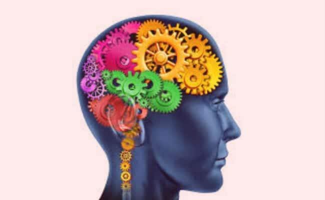 ¿Qué son y cómo se manifiestan los procesos cognitivos?