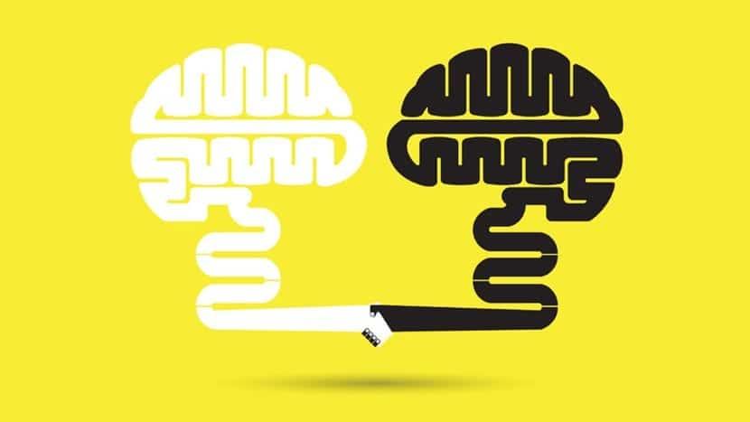 cerebros pensando pragmáticamente
