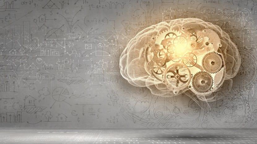 mecanismo cerebral