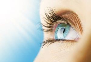 el cerebro a través de los ojos
