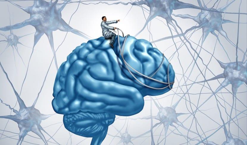 cerebro sesion de hipnosis