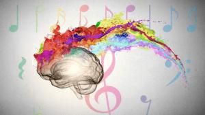 el cerebro cinestésico