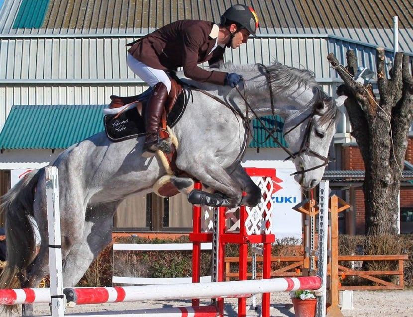 carreras de caballos como hobby