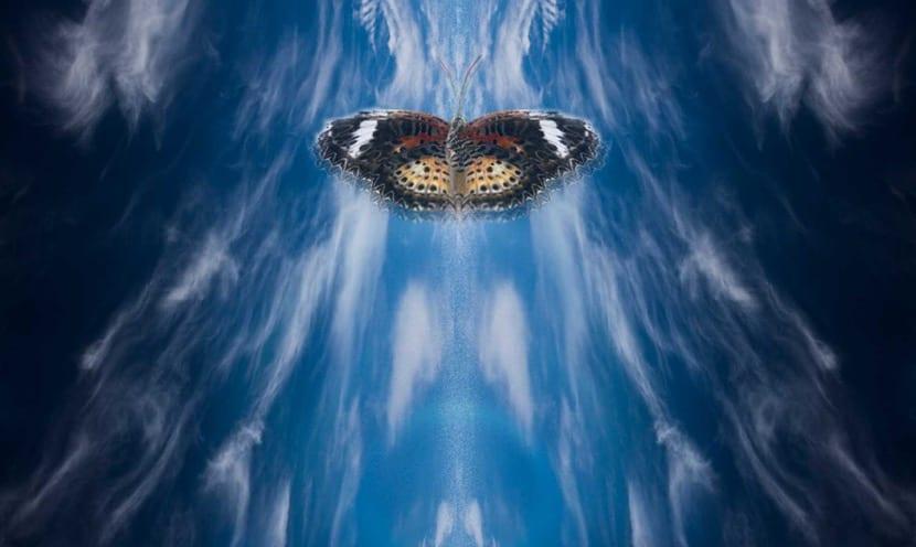 efecto mariposa y agua