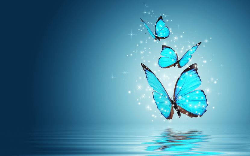 bonitas mariposas volando