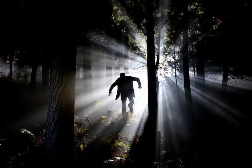 pesadilla en mitad del bosque