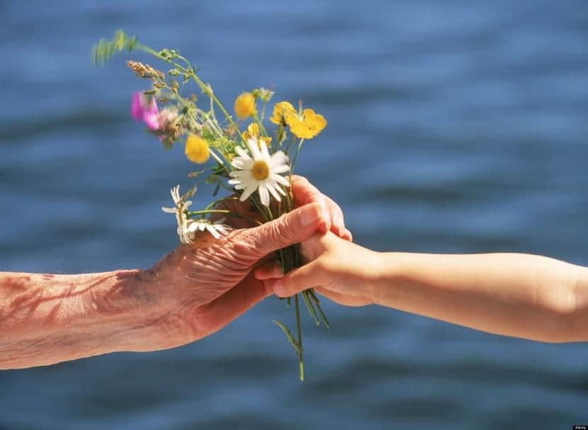 benevolencia en la vida