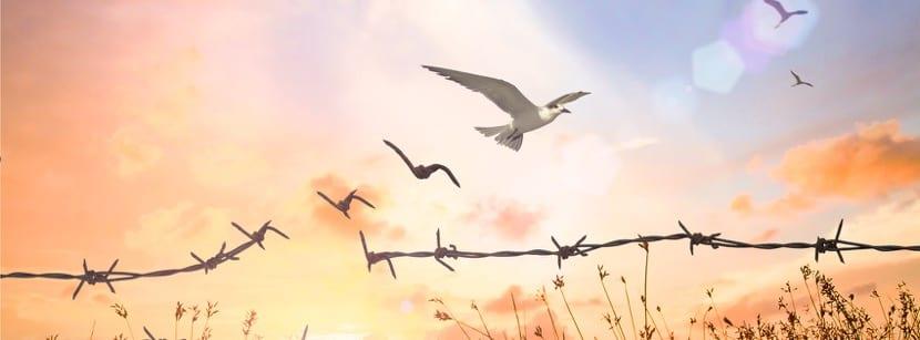 benevolencia simbolo de libertad