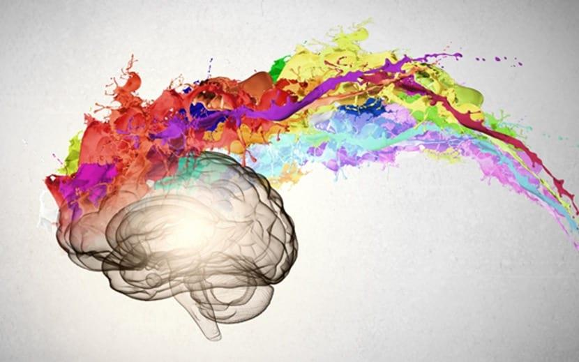 pensamiento covergente cerebro