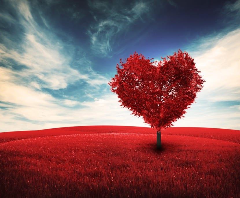 sentir con el corazon