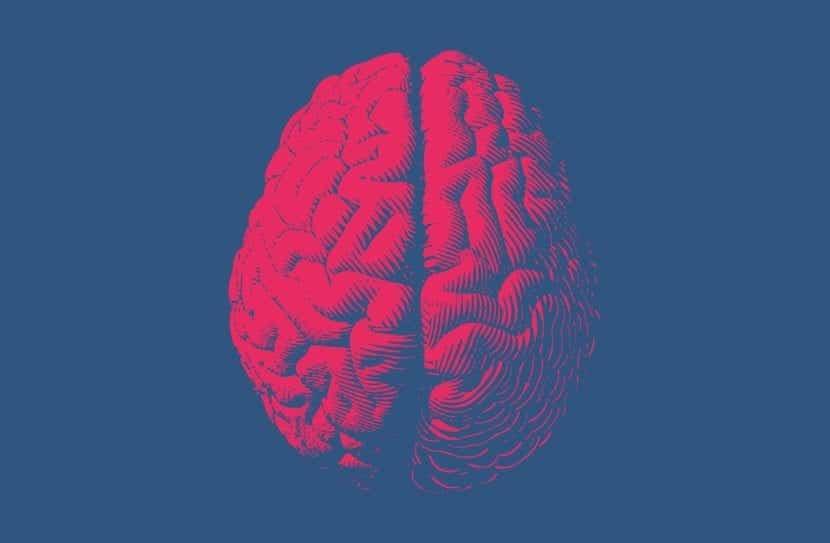 cerebro que representan los olvidos