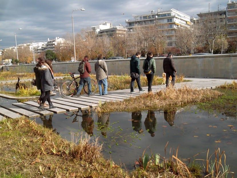 psicologia ambiental y entorno