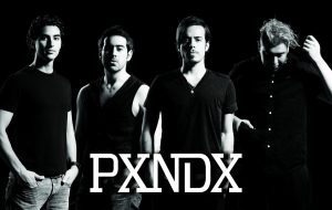 pxndx grupo