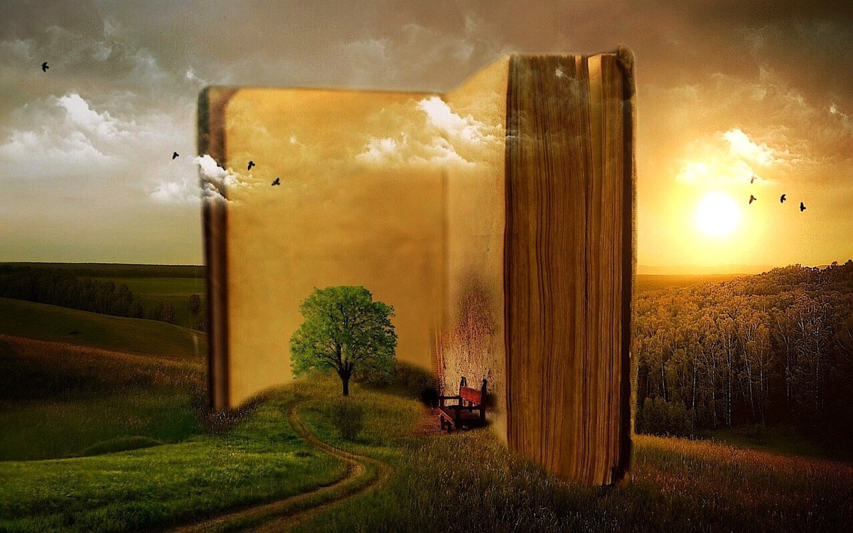 Hay muchos tipos de libros